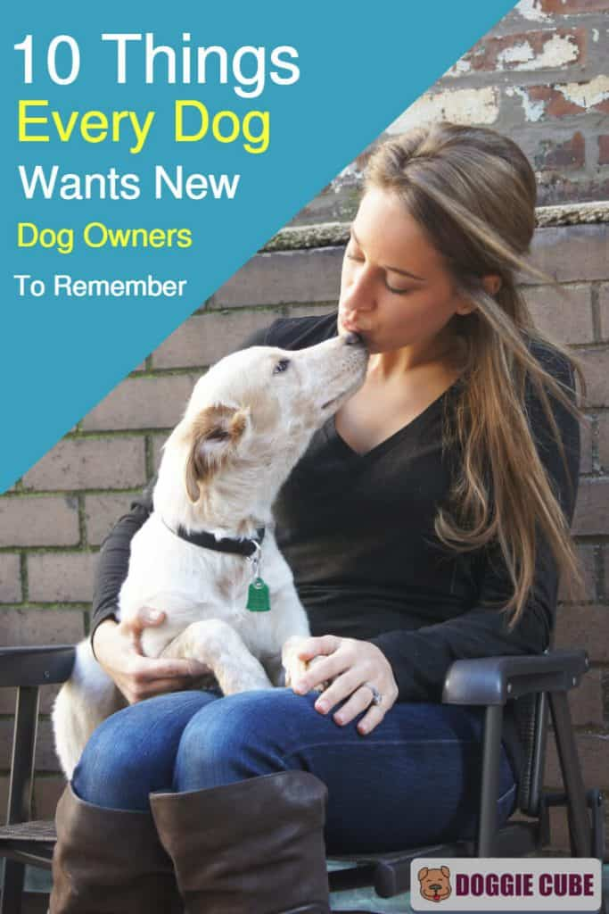 10 Things every dog wants new dog owners to remember