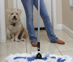 Cleaning up after dog accident