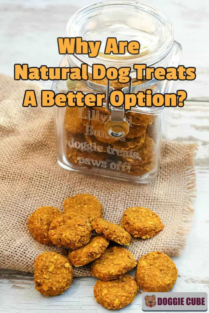 Why are natural dog treats a better option?