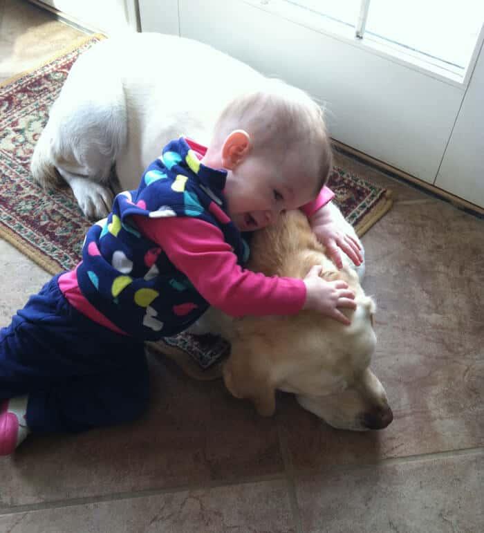 child with labrador