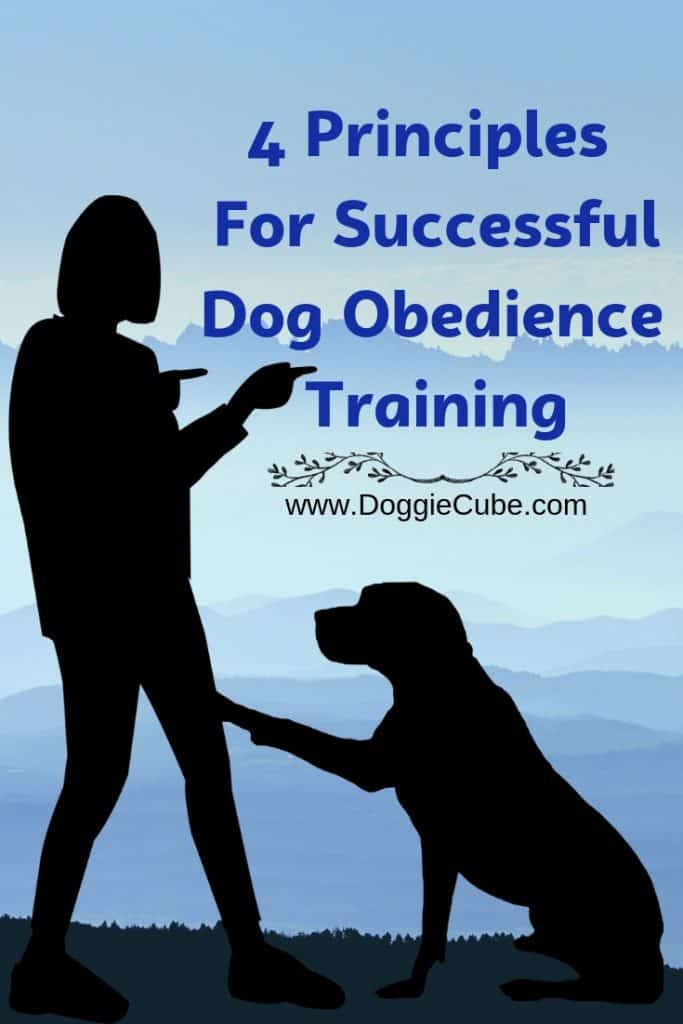 4 Principles For Successful Dog Obedience Training