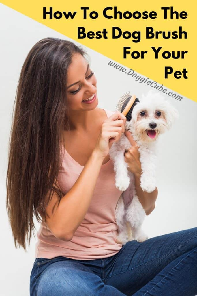 Are you looking for the best dog brushes to brush your dog's hair or fur. There're various types available. Some are for dogs with coats that are shedding. Some are more suitable for short hair dogs. Learn more. #doggrooming #dogbrushes