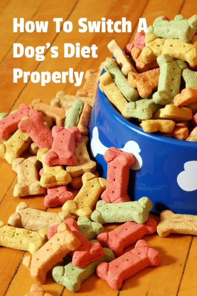 Over your dog's lifetime, there may be several occasions when you need to switch the dog food diet. A puppy must change from milk during nursing to dog food. Your adult dog may need to transition to a dog food diet specifically designed for senior dogs. Health reasons may be yet another cause for a switch. Here're some tips on the proper way to change dog food. #dogdiet #dogfood