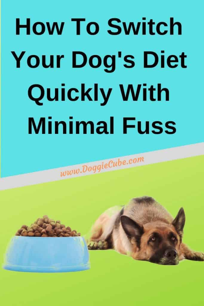 Your dog has gotten used to his diet for quite some time. But now, due to health or other reasons, it is necessary to switch dog food quickly. You've been collecting dog recipes so as to prepare the best homemade dog food. Or, perhaps, you've been offering a raw food diet to your dog, or buy the best dog food and treats for your pet. And now you need to switch your dog's diet quickly. Here're some tips on how to do it with as little fuss as possible. #dogdiet #dogfood
