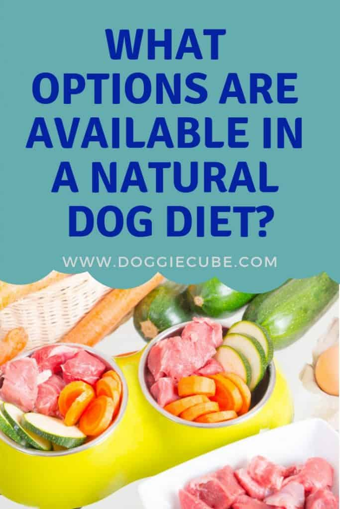 Are you thinking of making your own homemade natural dog food for your pet's diet? A dog's natural diet is mostly raw food which is easy to DIY. Take a look at some of the options available. #naturaldogfood #homemadedogfood