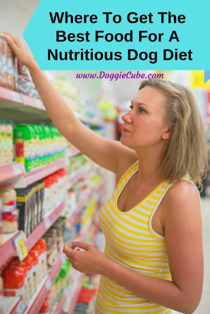 First time dog owners may be wondering where to get the best food for a nutritious dog diet. There're several options available. Whatever the condition of your dog, whether he is overweight or has a health issue, there's an option available. You may even consider raw food if it is suitable. #dogdiet #dogfood