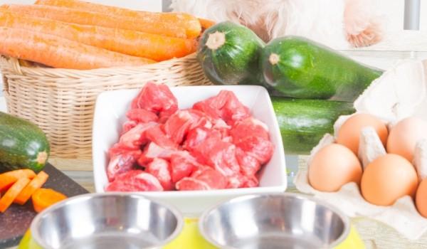 Healthy raw dog food