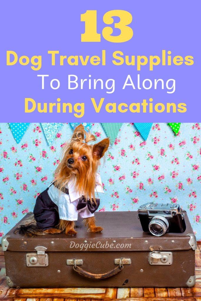 13 Dog travel supplies to bring along during vacations