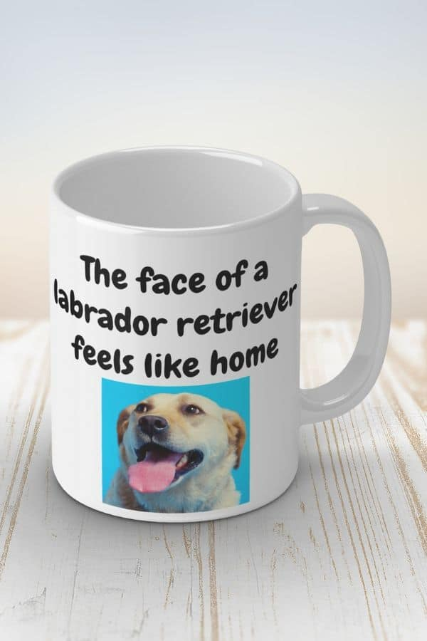 'The face of a labrador retriever feels like home' White Ceramic Mug