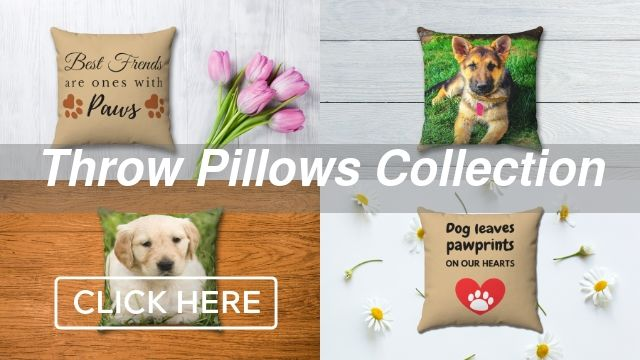 Throw Pillows Collection