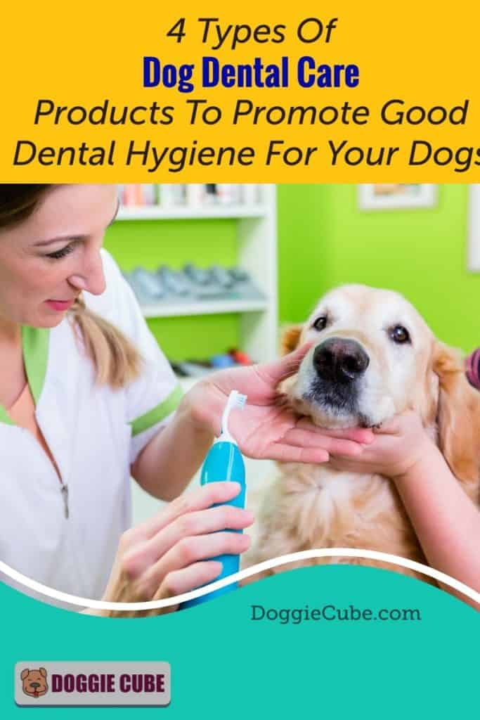 4 Types Of Dog Dental Care Products To Promote Good Dental Hygiene For Your Dogs.